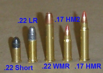 Common Rimfire Ammunition Examples