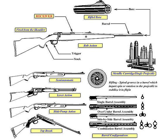 Rifle Diagram