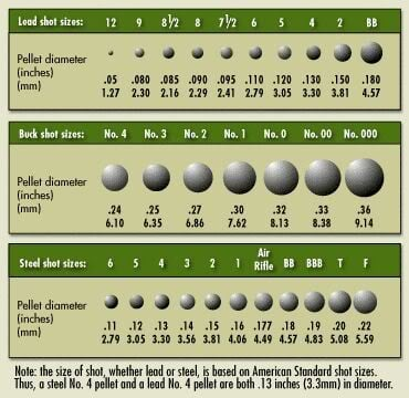 Bullets sizes calibers and types definitive guide pew pew