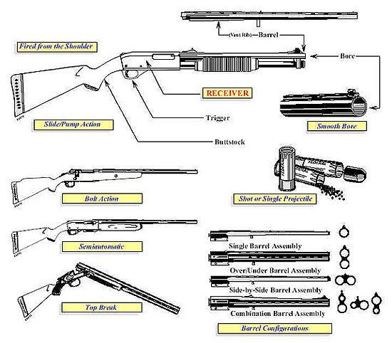 Shotgun Diagram