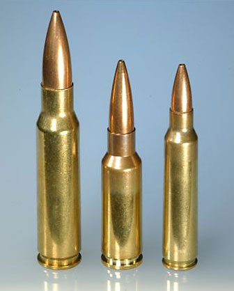 L to R: 7.62x51, 6.5 Grendel, 5.56