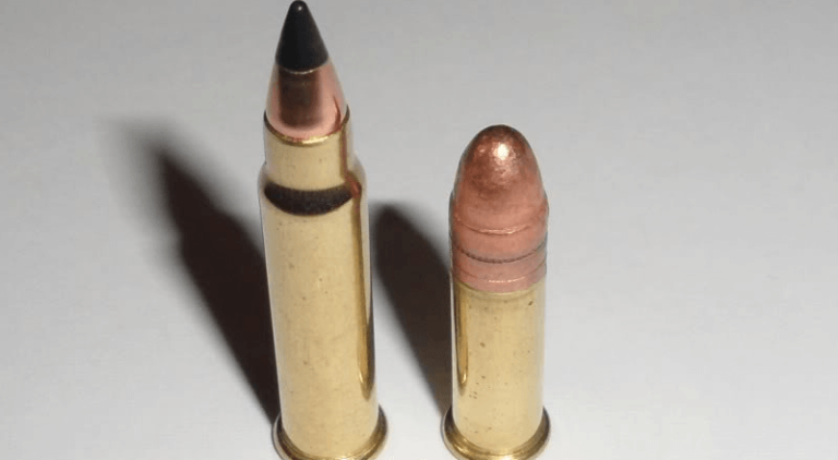 17 HMR [Guide]: Best Ammo & Guns - Pew Pew Tactical