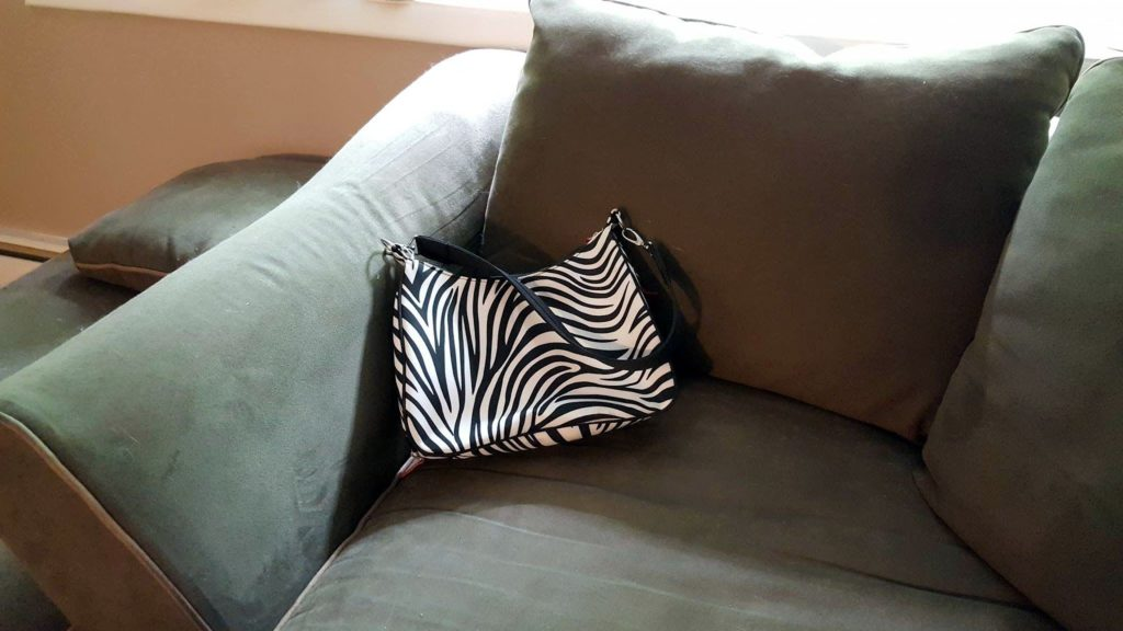 Purse on Couch