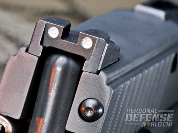 Sig P250 Rear Sights