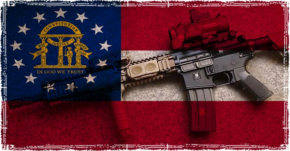 Georgia Flag and AR-15