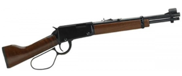 Lever Action .22 Mare's Leg
