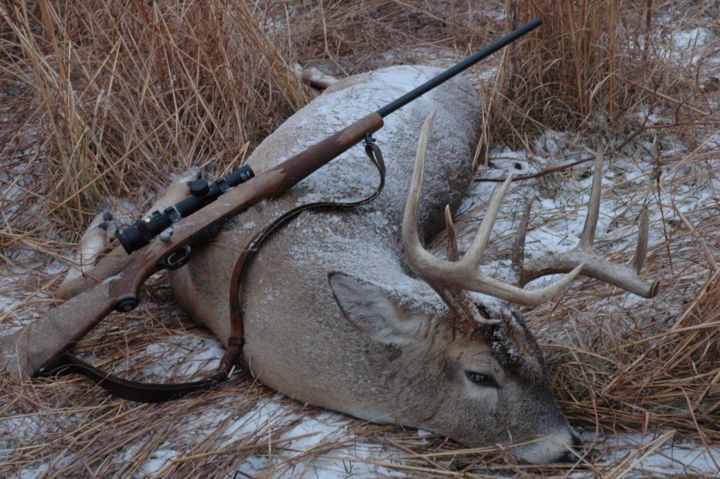Deer hunted with 6.5 creedmoor