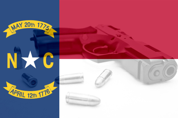 North Carolina state flag with pistol
