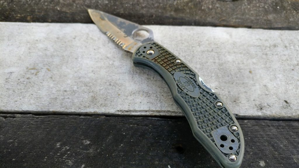 Knife with Serrated Blade