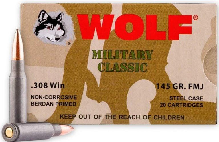 308 Win Vs  300 Win Mag: [Battle of the  30 Calibers] - Pew