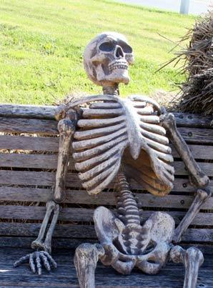 Waiting for companies to provide the new Prop 65 warnings