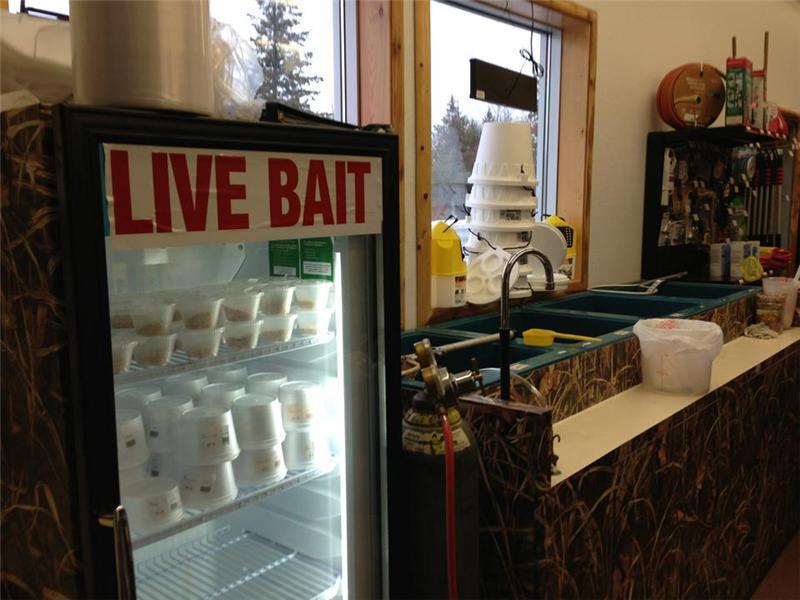 Live Bait Shop