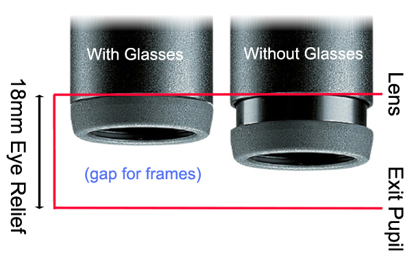 glasses and no glasses binocular picture