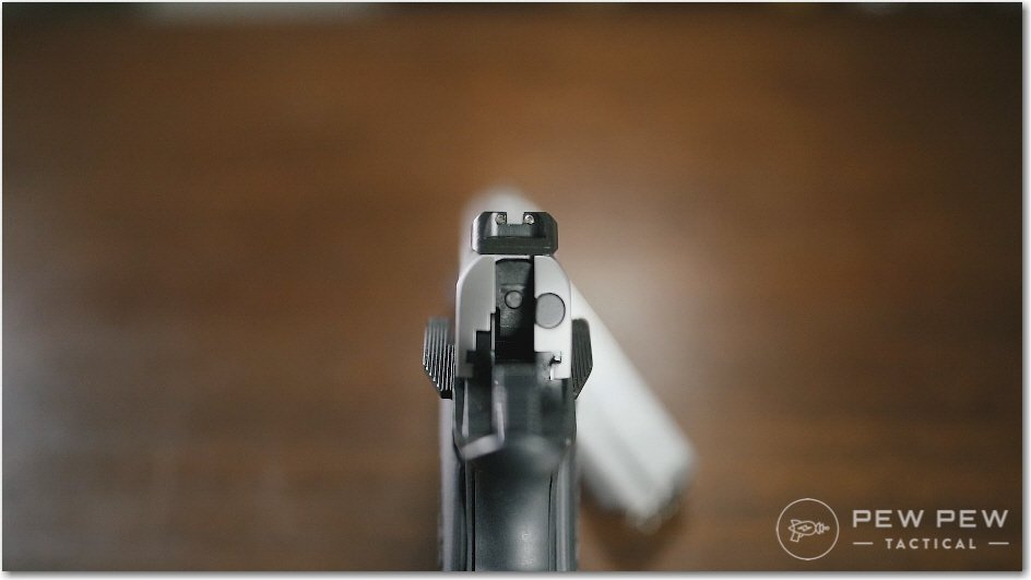 EMP Rear Sights