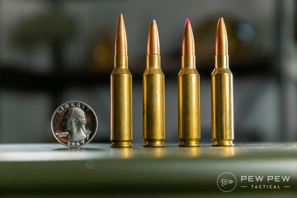 Assorted 6.5 Creedmoor (L to R: Federal FMJ, Soft 129gr, Ballistic Tip 120gr, Gold Medal 140gr)