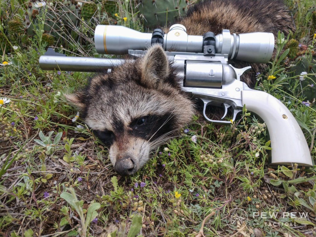 Raccoon and Magnum Research BFR .50 Linebaugh
