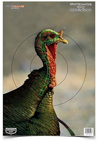 birchwood casey turkey target
