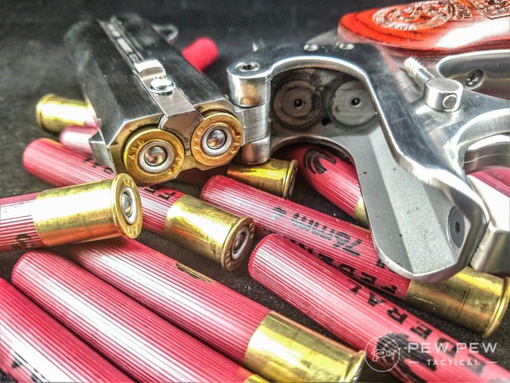 Bond Arms Snake Slayer .410 Shot 2