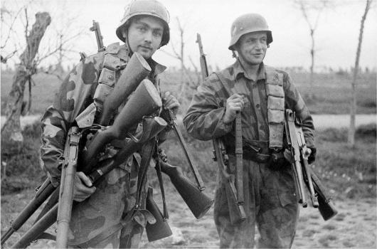 German soldiers with captured American Garands
