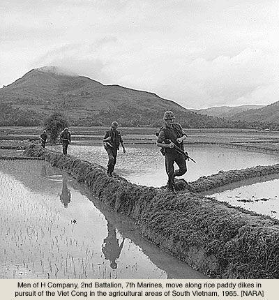 USMC Rice Field Vietnam 1965