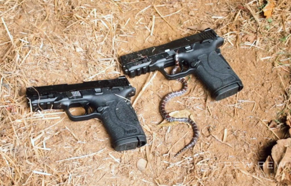 Shield EZ 9mm Vs EZ380 and a snake
