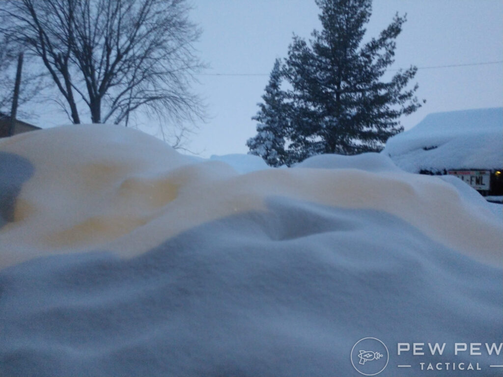 Snow Drifts and Trees