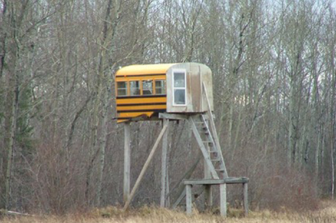 Bus hunting blind