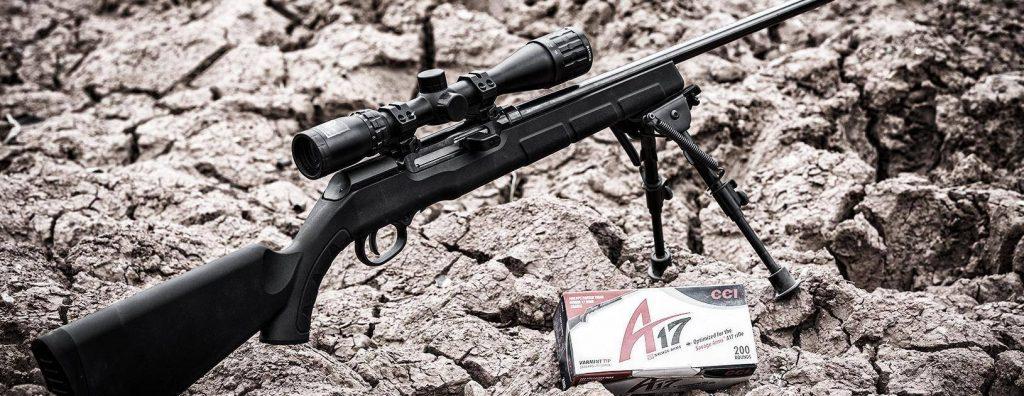 Savage Arms A17